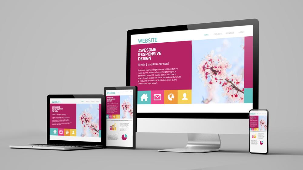 beautiful website design for Expo 2020